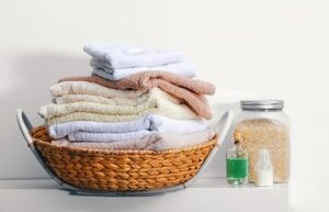 What are common household toxins?